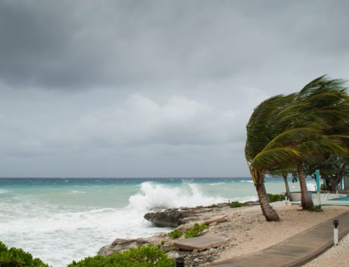 How To Make Sure Your Home Is Well Prepared For The Hurricane Season